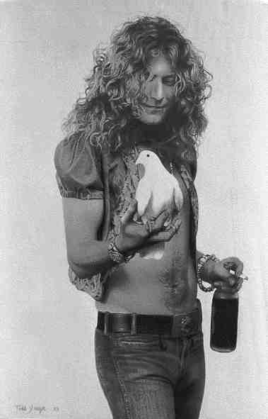 robert plant photographed recently - 379×591